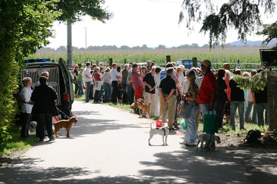 Viele Zuschauer bei den Vorführungen der Hundestaffeln