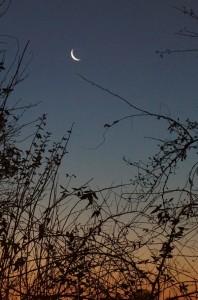 Mond über Brauweiler
